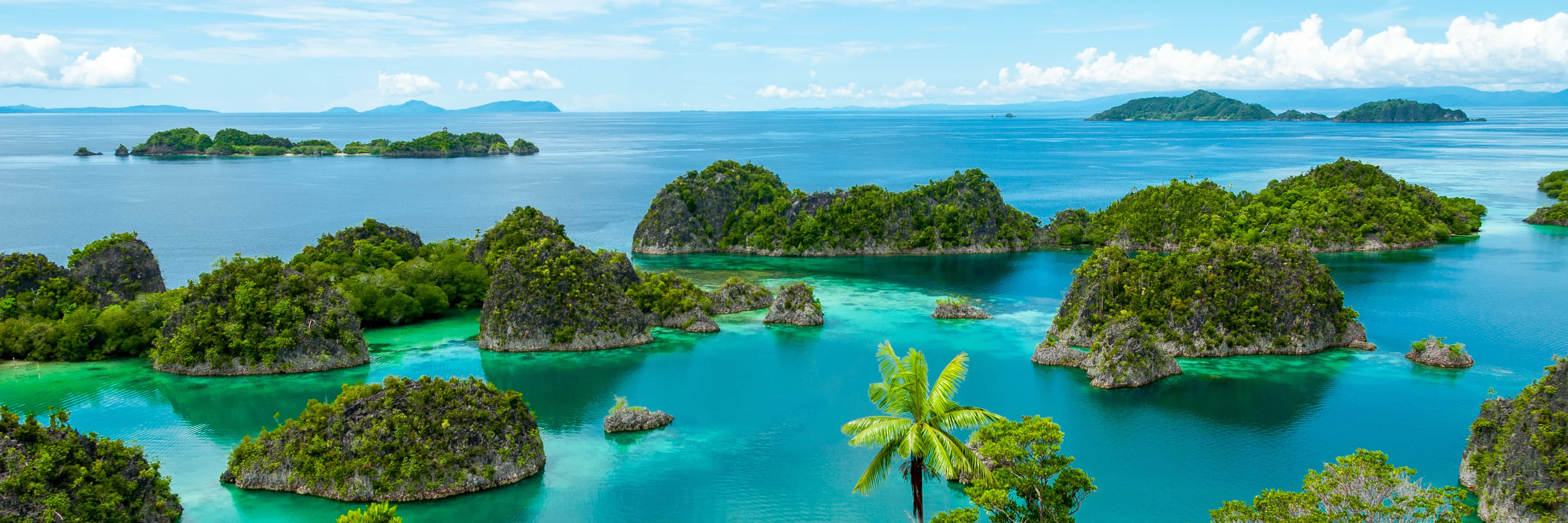 Trips in Indonesia