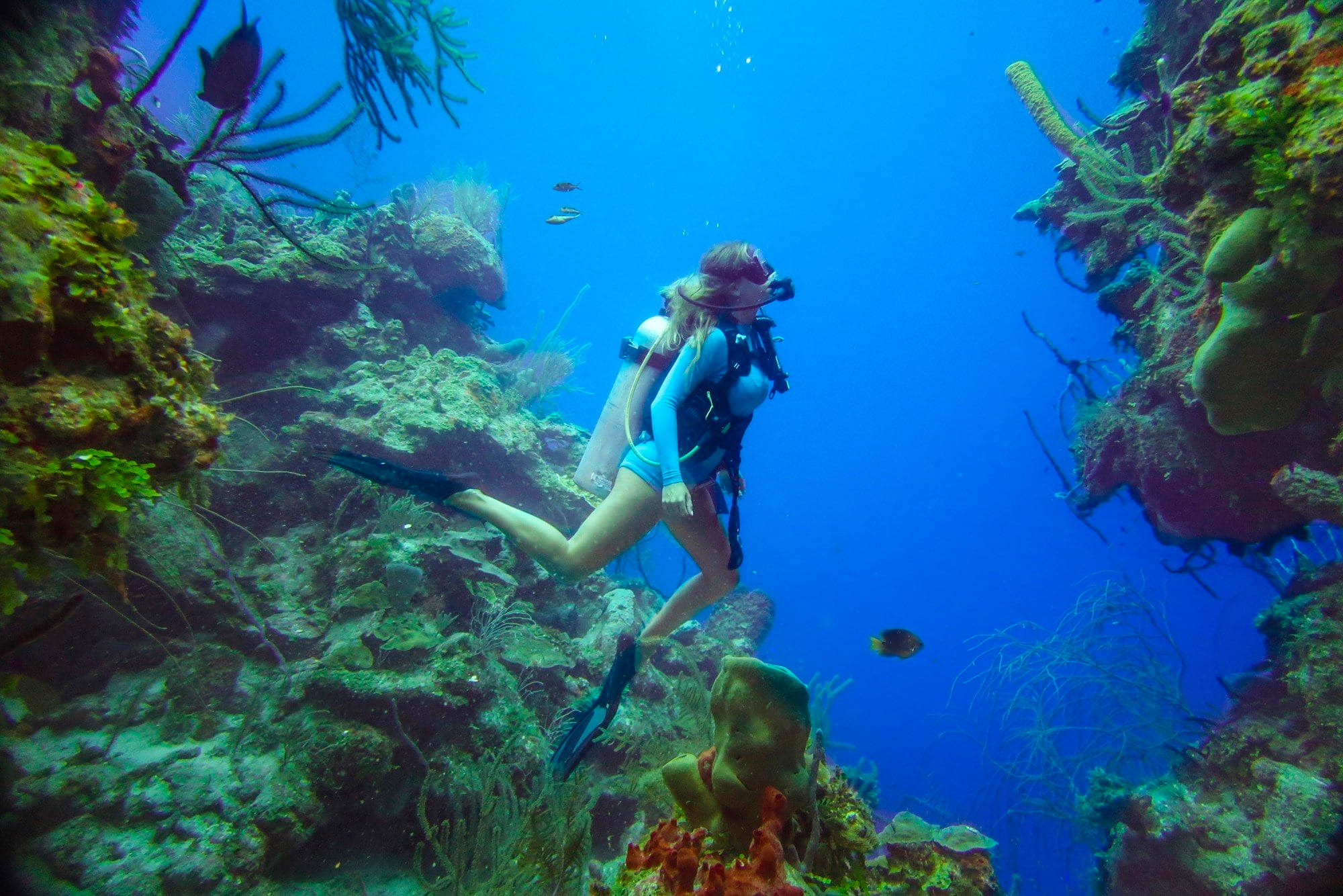 Belice – Blue Hole - trip of   in  United States, Belize