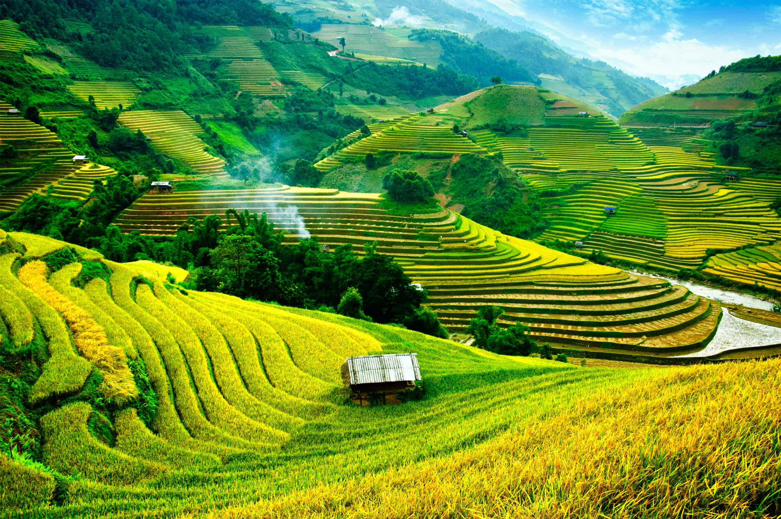 Vietnam indispensable - trip of   in  Vietnam